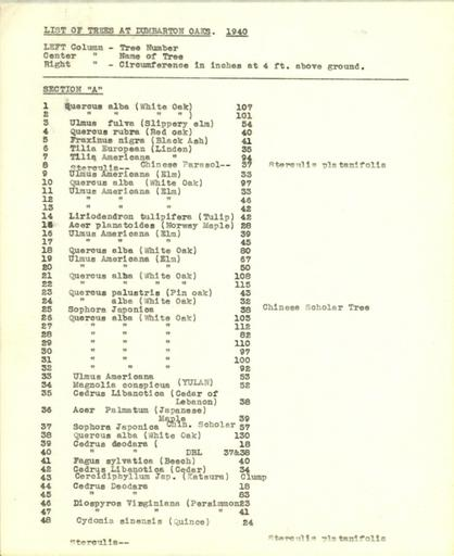 List of trees, Section A, 1940