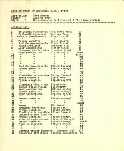 List of trees, Section G, 1940