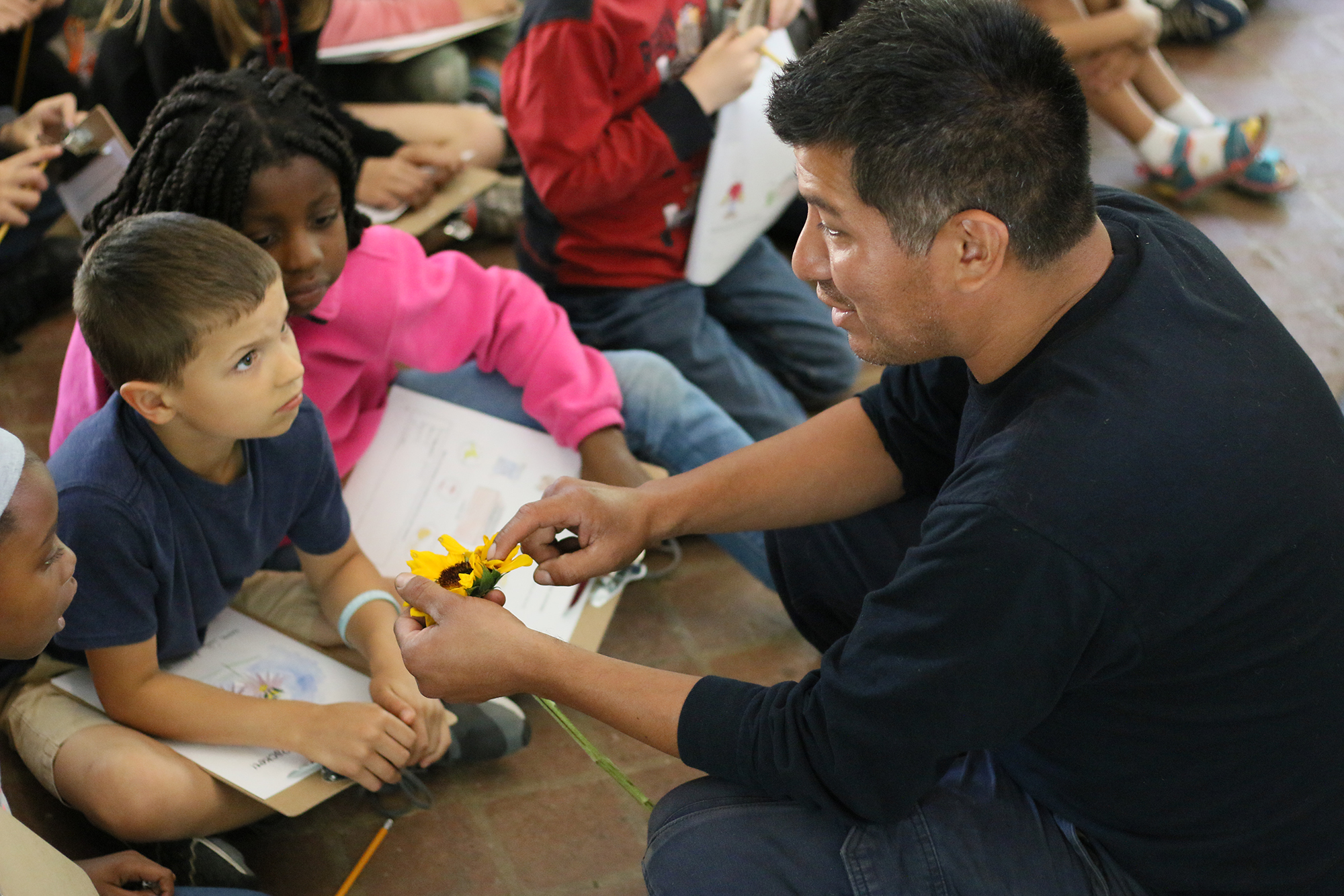 Luis Marmol teaching with sunflower