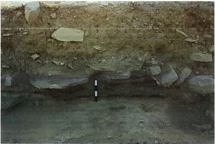 Fig. 19: Ash layers on surface against the north and west sides of robber trenches of former walls (Jackson 2011–2012)