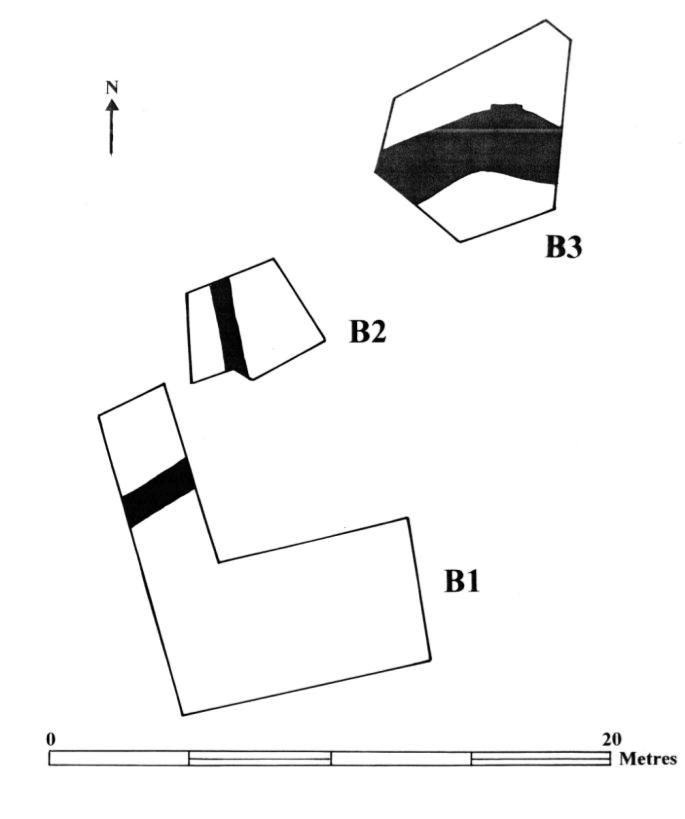 Fig. 10: Area B (Poulter 2010–2011)