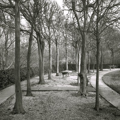 Julia Cart, Dumbarton Oaks, Path [Ellipse], 2002 (HC.PH.2017.01)