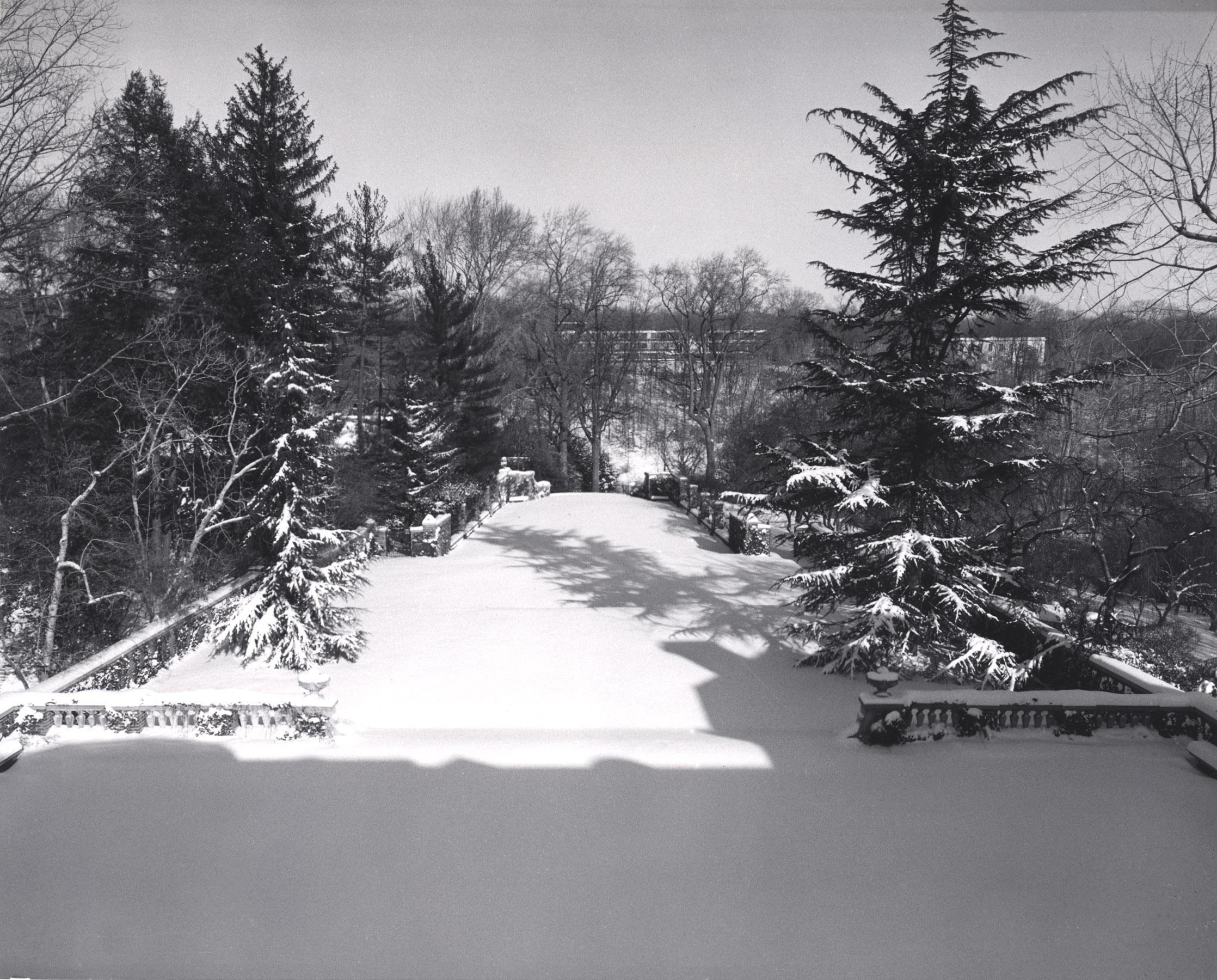 The North Vista at Dumbarton Oaks under snowfall.