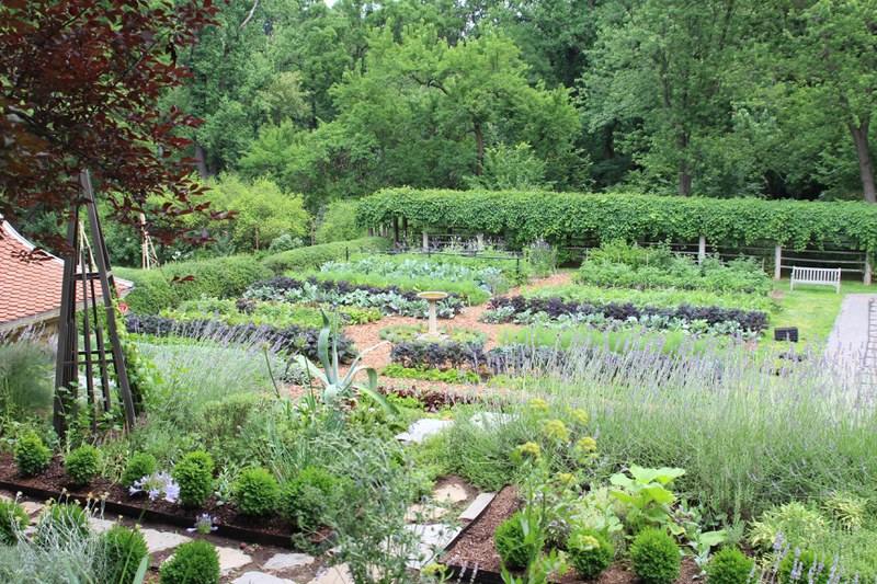 Then and Now: Changes to the Ellipse and Kitchen Gardens — Dumbarton ...