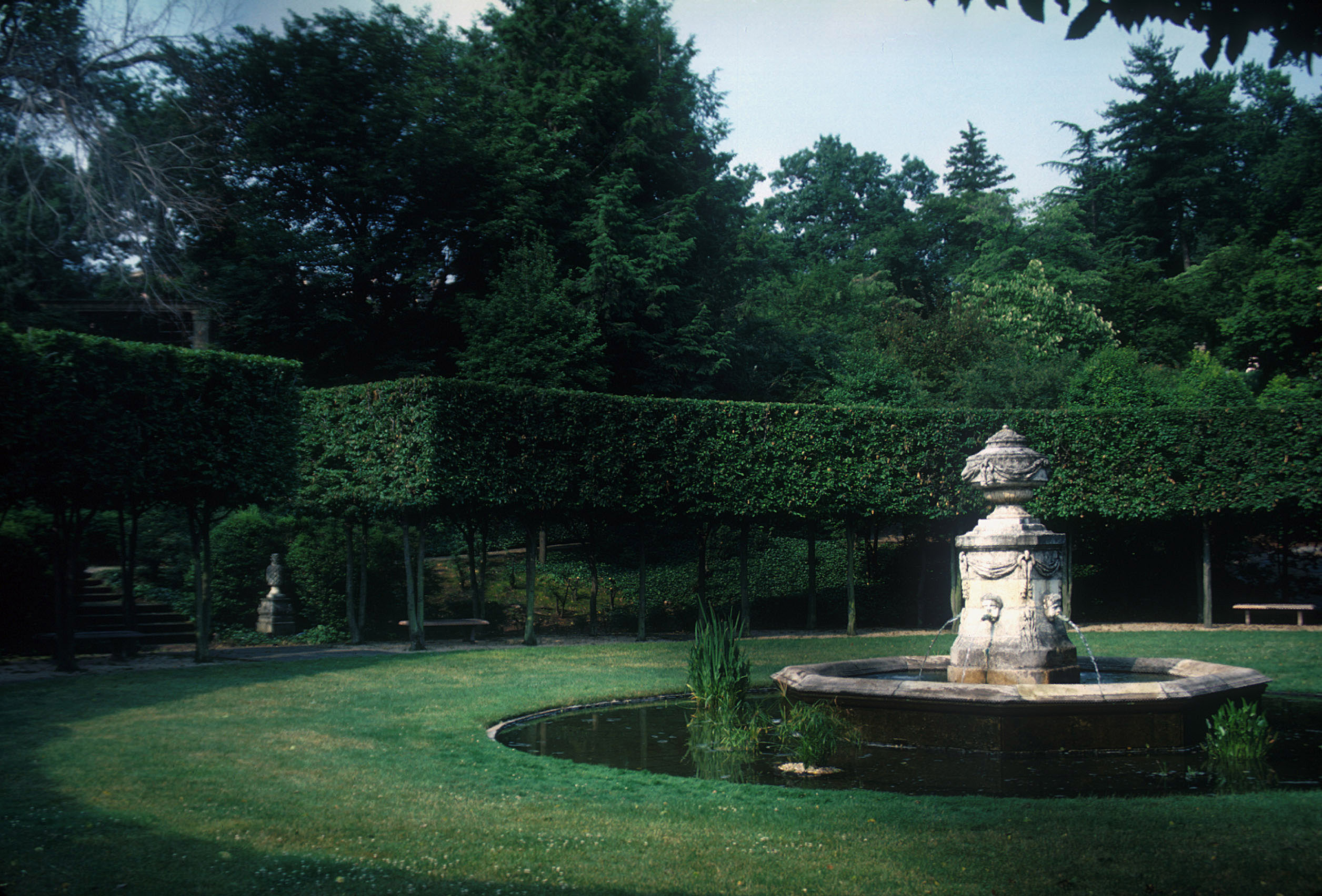 Ellipse with pleached hornbeam tress and Provençal fountain