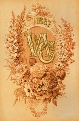 Seed Catalogue 4