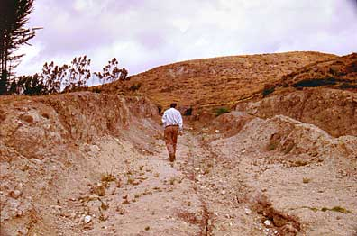 Fig. 3: One of the trenches dug by land developers (Raymond and Delgado 2008–2009)