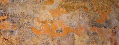 Fig. 9: Glyphs, drawn in black above the spring vault line on the west vault in Room 2 (Golden et al. 2004–2005)