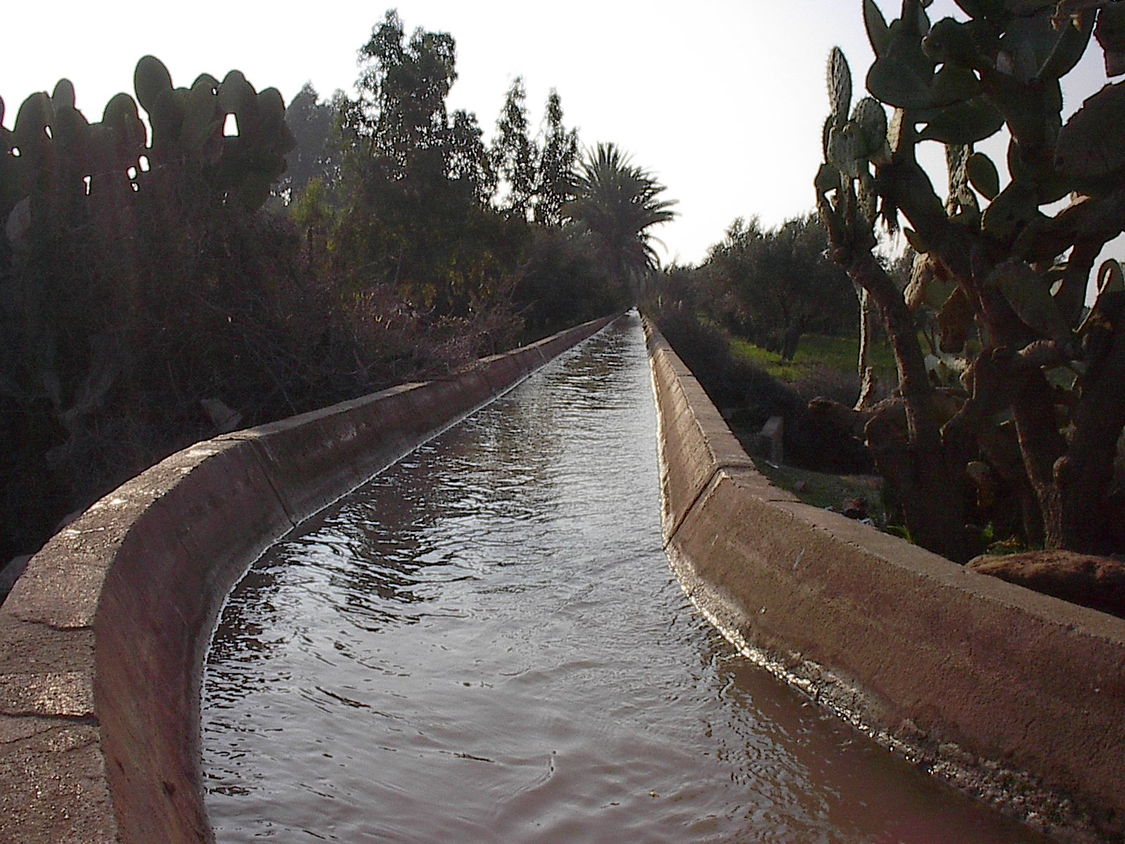 """Tasoultant: the Royal Canal. Photograph by Mohammed El Faïz, """"Garden Strategy of Almohad Sultans"""" (2007), fig. 4."""
