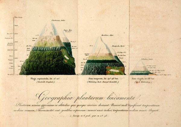 De distributione geographica plantarum secundum coeli temperiem et altitudinem montium