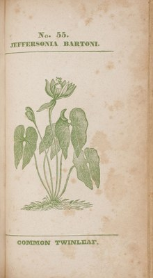 Medical flora: or, Manual of the medical botany of the United States of North America