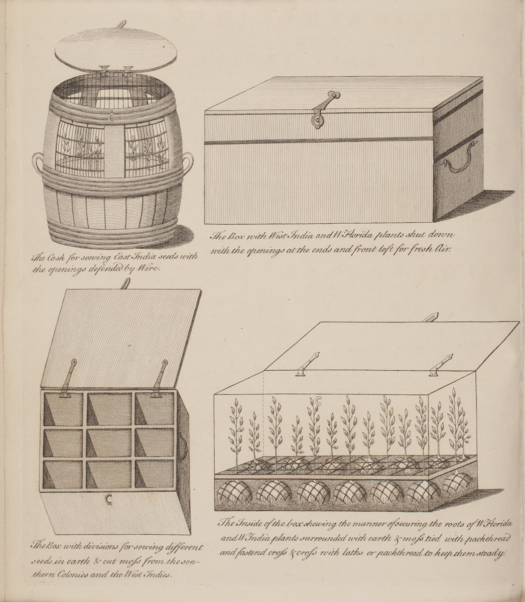 Directions for bringing over seeds and plants, from the East
