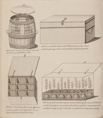 Directions for bringing over seeds and plants, from the East Indies and other distant countries, in a state of vegetation