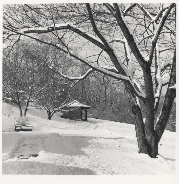 Cherry Hill, snow covered view with Catalogue House, 1965–1987