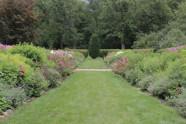 Herbaceous Border, looking East, July 2015