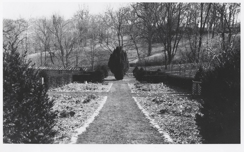 Herbaceous Border, yew at east end, April 1932