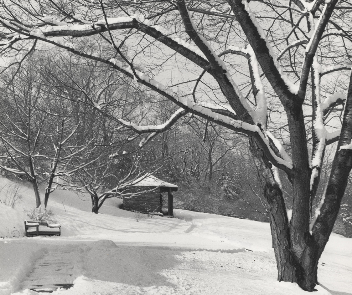 Cherry Hill, snow covered view with Catalogue House, 1965–1987 (detail)