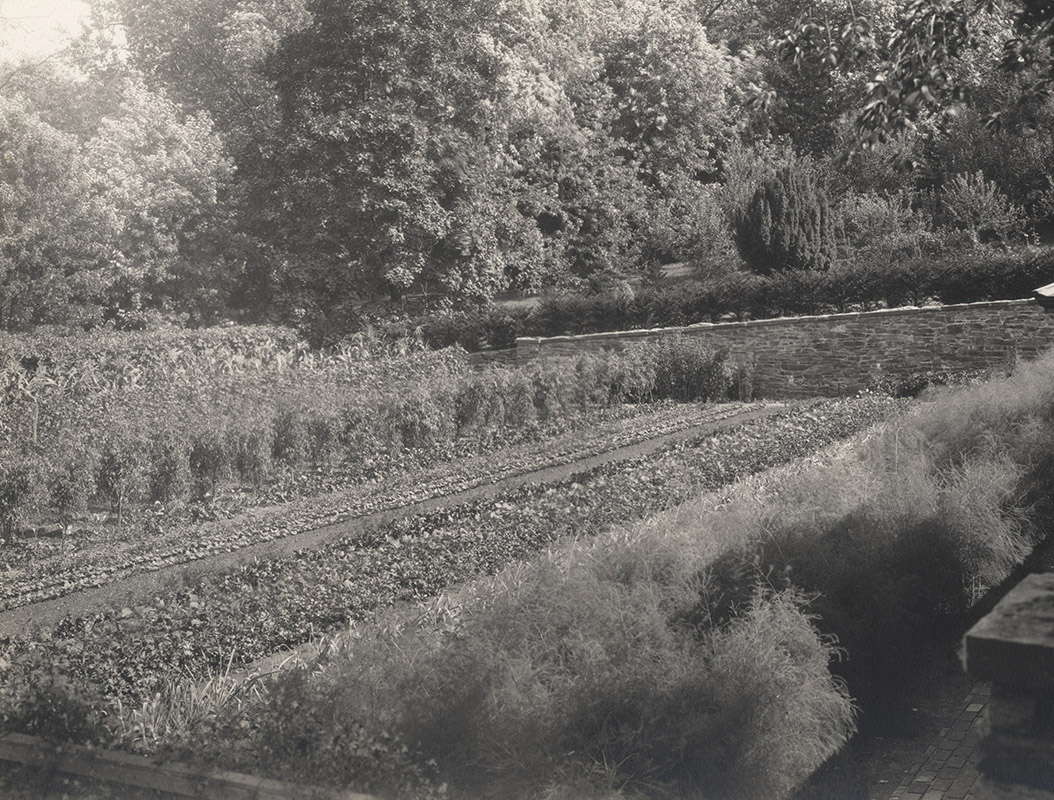 Kitchen Garden, lower level, looking southeast to yew, 1927–1932 (detail)