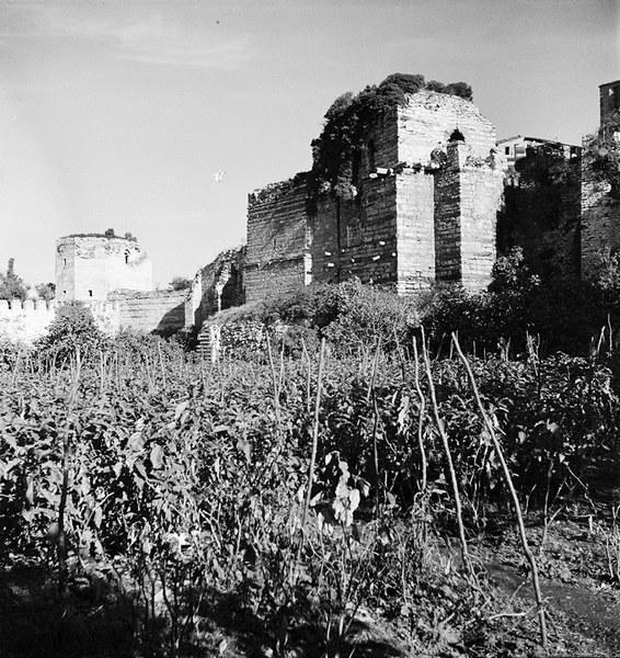 Market Garden and Tower of Isaac Angelos, Blachernai Walls