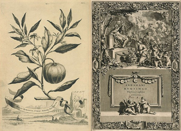 Title Page, Phytographia curiosa