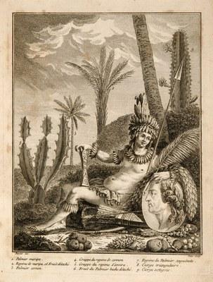 Histoire des plantes de la Guiane Françoise