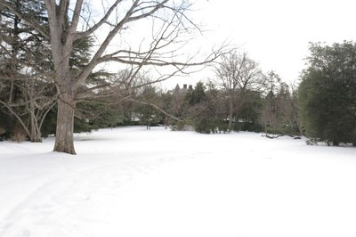 East Lawn